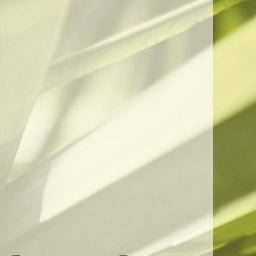 DESKTOP-banner-grid--4